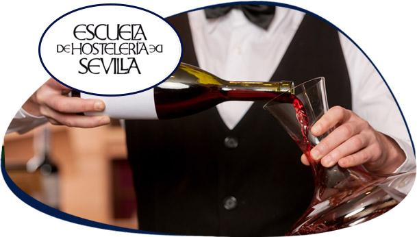 Diplomatura Superior en Servicios de Restauración y Sumillería - Programa de Prácticas - Escuela Superior de Hostelería de Sevilla